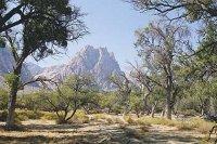 Công viên Spring Mountain Ranch State